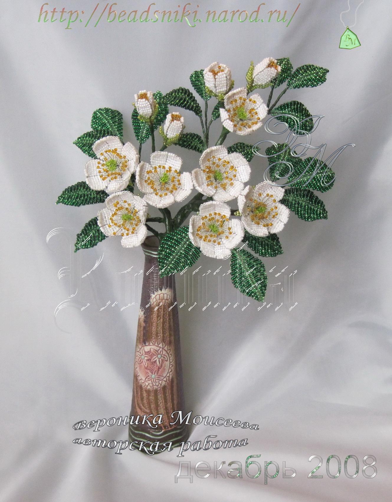 1.Жасмин Невеста