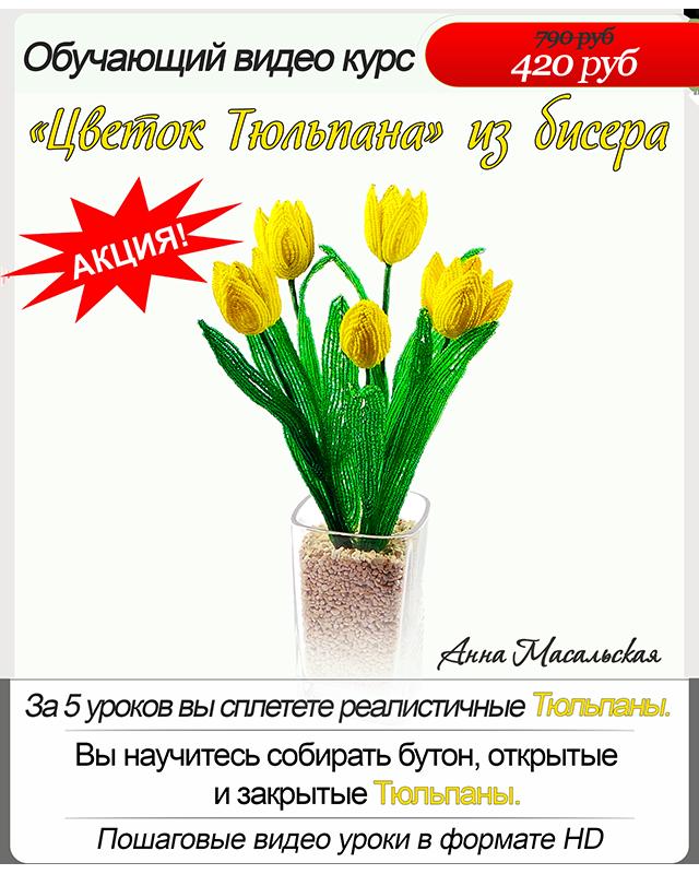 тюльпаны.jpg-420