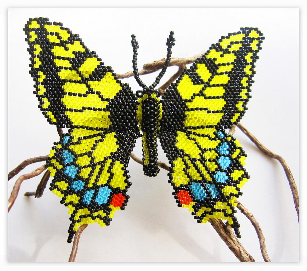 бабочка Махагон