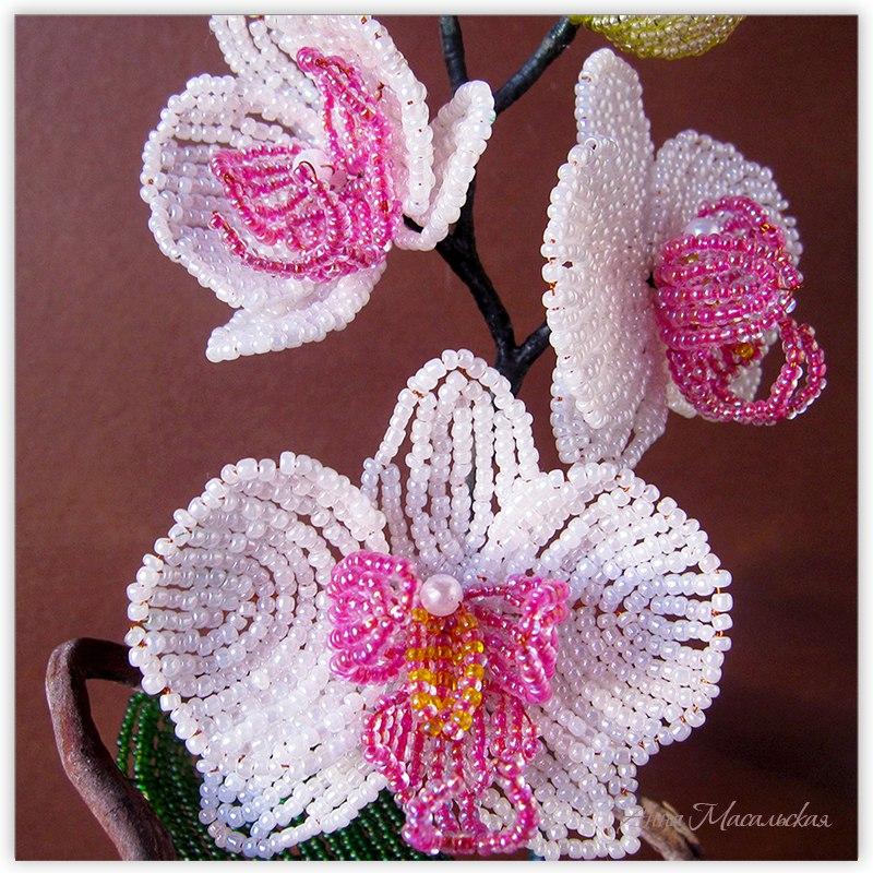 орхидея из бисера, фрагмент
